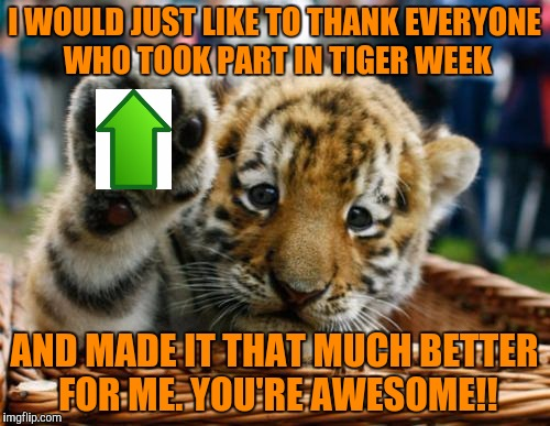 I've gained at least 25k points this week, so thank you all very much! Tiger Week comes to a close . . . a TigerLegend1046 event | I WOULD JUST LIKE TO THANK EVERYONE WHO TOOK PART IN TIGER WEEK AND MADE IT THAT MUCH BETTER FOR ME. YOU'RE AWESOME!! | image tagged in tiger week,tigerlegend1046,thank you,tigers,its been grrrrreat fun,can we do it again some time | made w/ Imgflip meme maker
