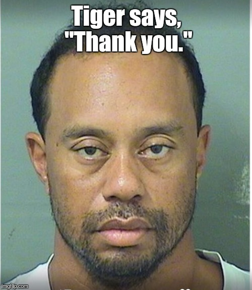 "Tiger says,  ""Thank you."" 
