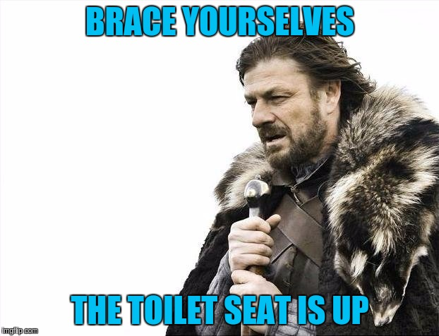 Brace Yourselves X is Coming Meme | BRACE YOURSELVES THE TOILET SEAT IS UP | image tagged in memes,brace yourselves x is coming | made w/ Imgflip meme maker