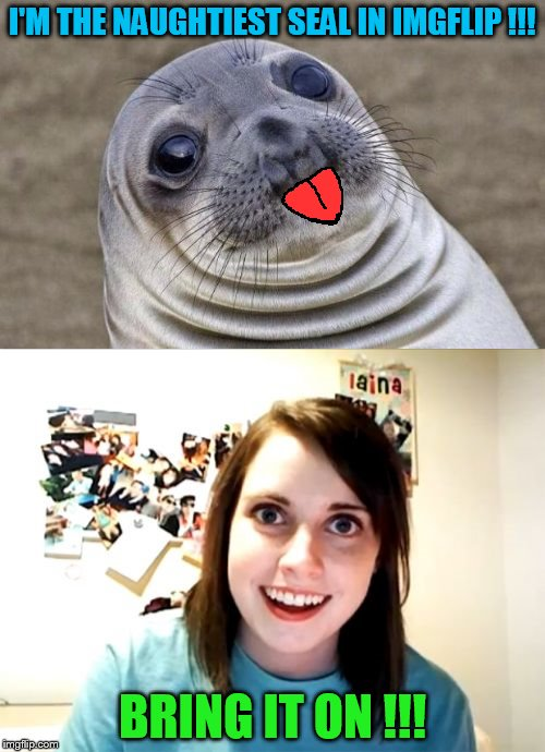 """overly vs naughty seal"" 