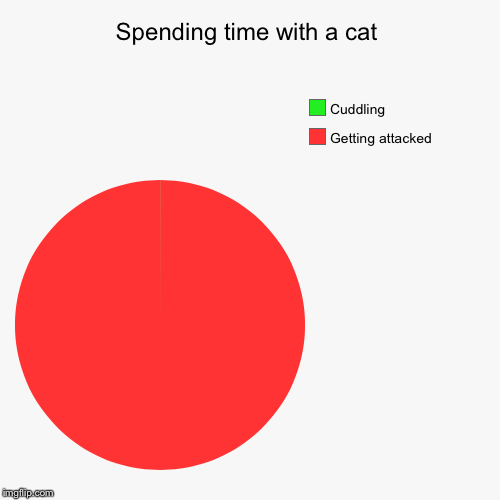 Spending time with a cat | Getting attacked, Cuddling | image tagged in funny,pie charts | made w/ Imgflip pie chart maker