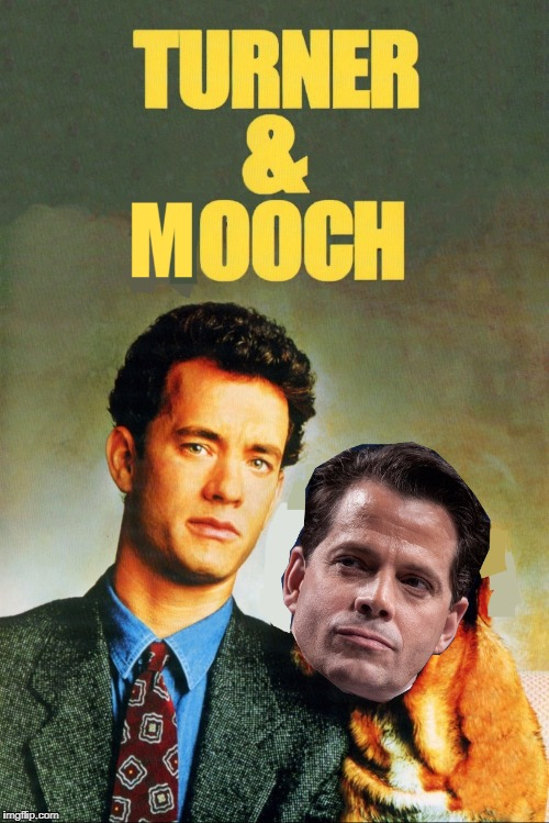 A bit late, but when inspiration strikes... :) | . | image tagged in memes,anthony scaramucci,films,tom hanks,politics,animals | made w/ Imgflip meme maker