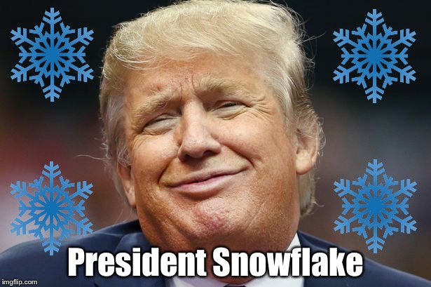 Snowflake | President Snowflake | image tagged in donald trump | made w/ Imgflip meme maker
