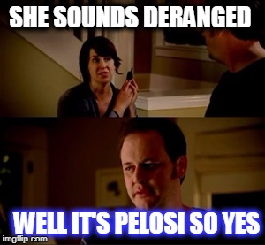 Jake from state farm | SHE SOUNDS DERANGED WELL IT'S PELOSI SO YES | image tagged in jake from state farm | made w/ Imgflip meme maker