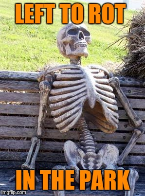 Waiting Skeleton Meme | LEFT TO ROT IN THE PARK | image tagged in memes,waiting skeleton | made w/ Imgflip meme maker