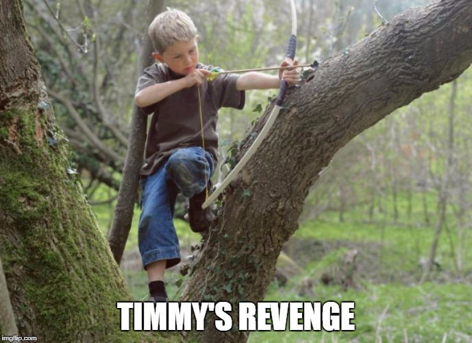 TIMMY'S REVENGE | made w/ Imgflip meme maker