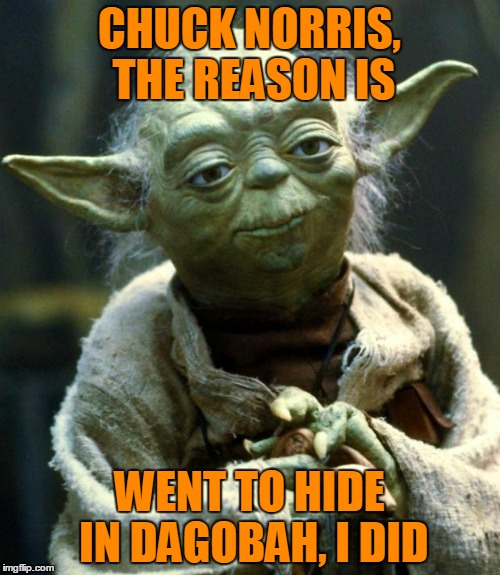Star Wars Yoda Meme | CHUCK NORRIS, THE REASON IS WENT TO HIDE IN DAGOBAH, I DID | image tagged in memes,star wars yoda | made w/ Imgflip meme maker