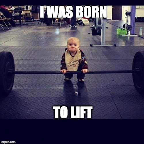 I WAS BORN TO LIFT | image tagged in mcfitness | made w/ Imgflip meme maker
