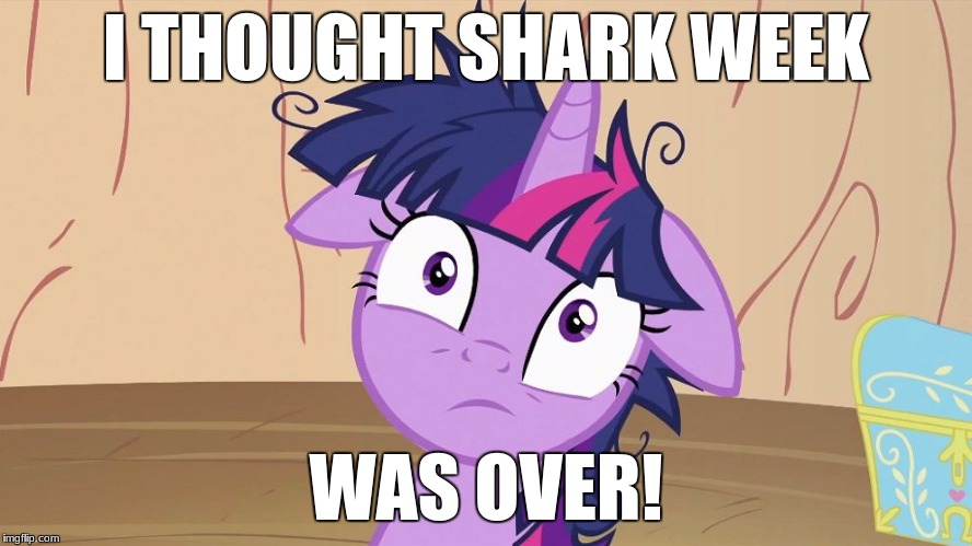 Messy Twilight Sparkle | I THOUGHT SHARK WEEK WAS OVER! | image tagged in messy twilight sparkle | made w/ Imgflip meme maker