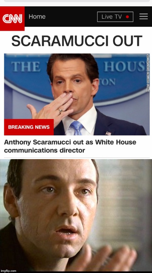 Just like that, he was gone... | image tagged in memes,scaramucci | made w/ Imgflip meme maker