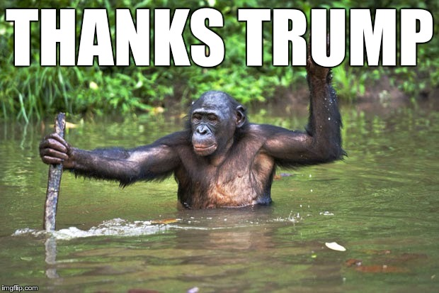 THANKS TRUMP | made w/ Imgflip meme maker