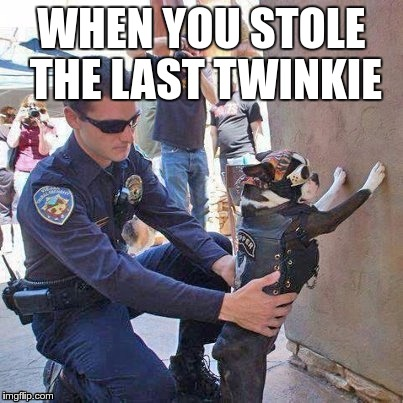 WHEN YOU STOLE THE LAST TWINKIE | made w/ Imgflip meme maker