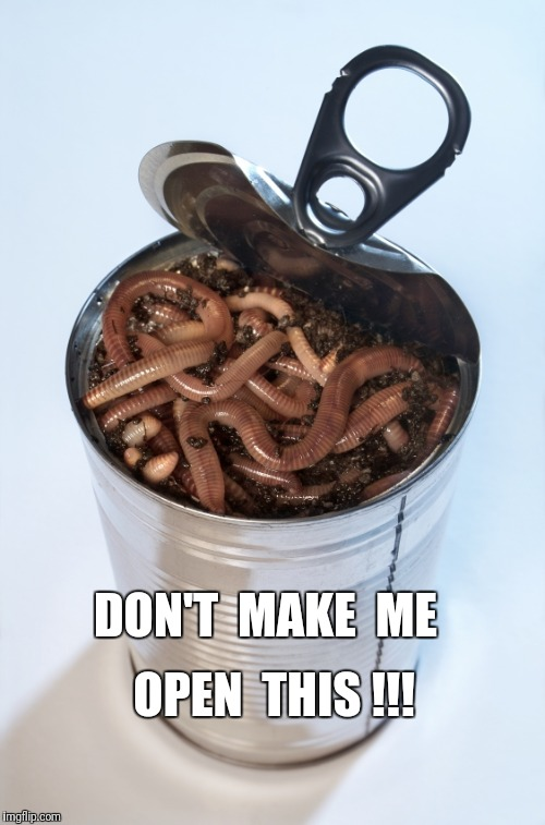 DON'T MAKE ME OPEN THIS | DON'T  MAKE  ME OPEN  THIS !!! | image tagged in can 'o' worms,dont make me,past mistakes,remind you,open a can of worms | made w/ Imgflip meme maker