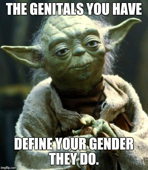 Star Wars Yoda Meme | THE GENITALS YOU HAVE DEFINE YOUR GENDER THEY DO. | image tagged in memes,star wars yoda | made w/ Imgflip meme maker