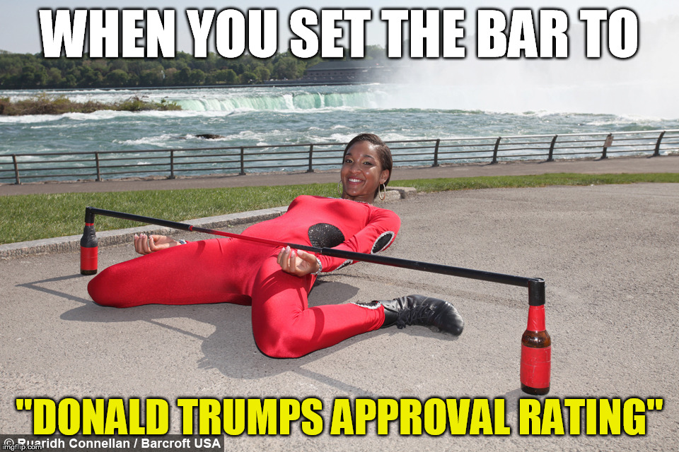 "So much winning! | WHEN YOU SET THE BAR TO ""DONALD TRUMPS APPROVAL RATING"" 