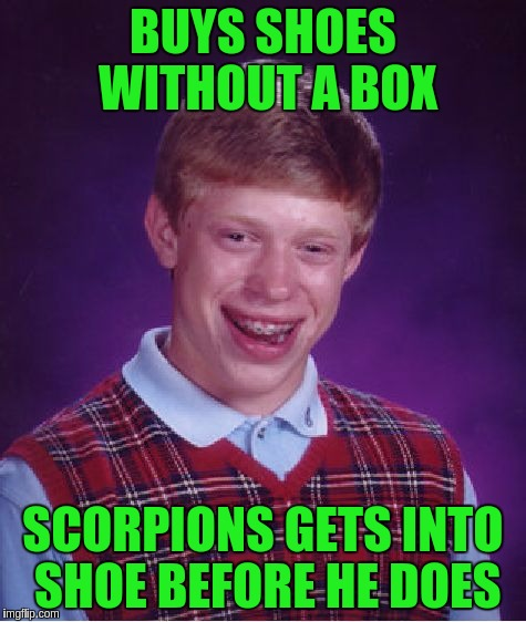 Bad Luck Brian Meme | BUYS SHOES WITHOUT A BOX SCORPIONS GETS INTO SHOE BEFORE HE DOES | image tagged in memes,bad luck brian | made w/ Imgflip meme maker