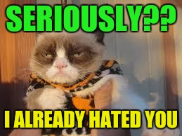 Grumpy Cat Halloween | SERIOUSLY?? I ALREADY HATED YOU | image tagged in memes,grumpy cat halloween,grumpy cat | made w/ Imgflip meme maker