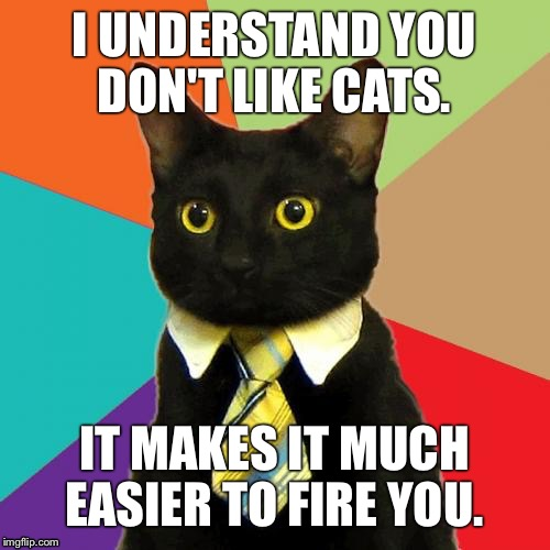 Business Cat Meme | I UNDERSTAND YOU DON'T LIKE CATS. IT MAKES IT MUCH EASIER TO FIRE YOU. | image tagged in memes,business cat | made w/ Imgflip meme maker