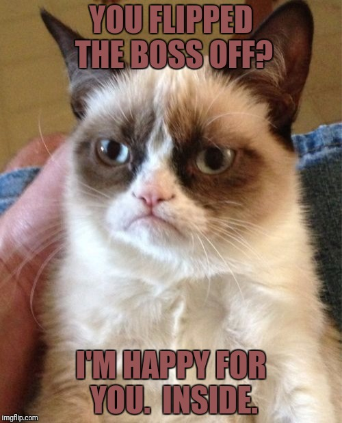 Grumpy Cat Meme | YOU FLIPPED THE BOSS OFF? I'M HAPPY FOR YOU.  INSIDE. | image tagged in memes,grumpy cat | made w/ Imgflip meme maker