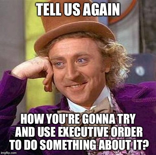 Creepy Condescending Wonka Meme | TELL US AGAIN HOW YOU'RE GONNA TRY AND USE EXECUTIVE ORDER TO DO SOMETHING ABOUT IT? | image tagged in memes,creepy condescending wonka | made w/ Imgflip meme maker