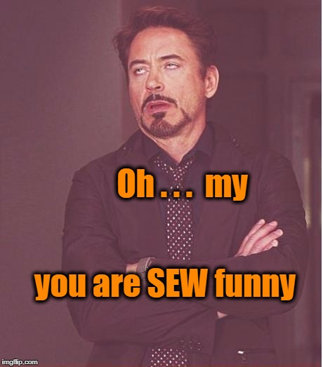 Face You Make Robert Downey Jr Meme | you are SEW funny Oh . . .  my | image tagged in memes,face you make robert downey jr | made w/ Imgflip meme maker