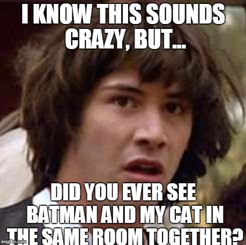 Conspiracy Keanu Meme | I KNOW THIS SOUNDS CRAZY, BUT... DID YOU EVER SEE BATMAN AND MY CAT IN THE SAME ROOM TOGETHER? | image tagged in memes,conspiracy keanu | made w/ Imgflip meme maker