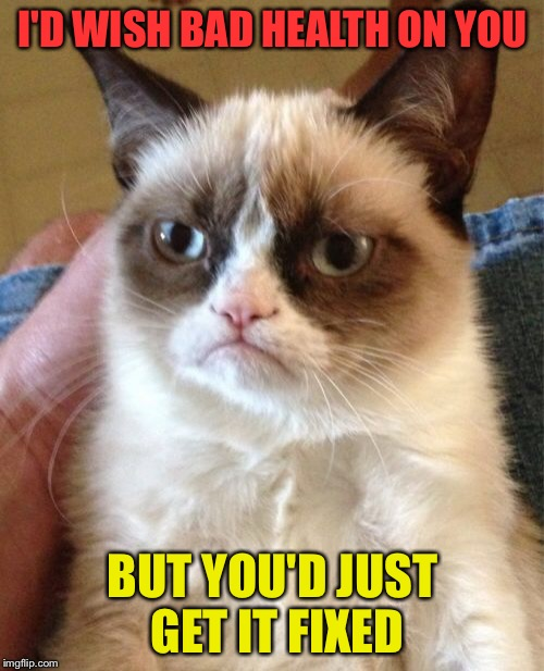 Grumpy Cat Meme | I'D WISH BAD HEALTH ON YOU BUT YOU'D JUST GET IT FIXED | image tagged in memes,grumpy cat | made w/ Imgflip meme maker