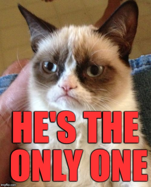Grumpy Cat Meme | HE'S THE ONLY ONE | image tagged in memes,grumpy cat | made w/ Imgflip meme maker