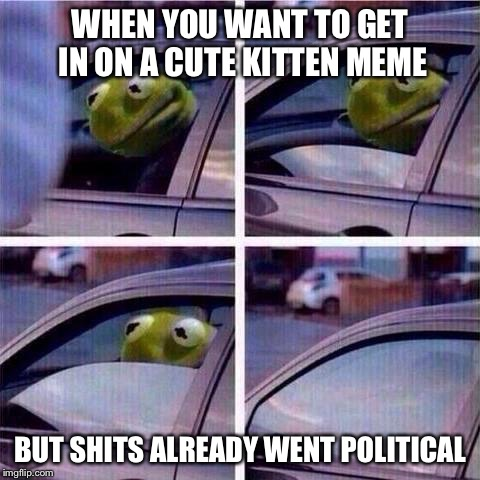 CUTE KITTEN MEME | WHEN YOU WANT TO GET IN ON A CUTE KITTEN MEME BUT SHITS ALREADY WENT POLITICAL | image tagged in kermit window roll up,kermit the frog,memes,funny,animals | made w/ Imgflip meme maker