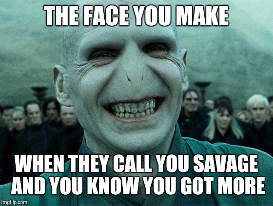 THE FACE YOU MAKE WHEN THEY CALL YOU SAVAGE AND YOU KNOW YOU GOT MORE | image tagged in voldermort funny | made w/ Imgflip meme maker