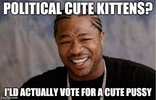 Yo Dawg Heard You Meme | POLITICAL CUTE KITTENS? I'LD ACTUALLY VOTE FOR A CUTE PUSSY | image tagged in memes,yo dawg heard you | made w/ Imgflip meme maker