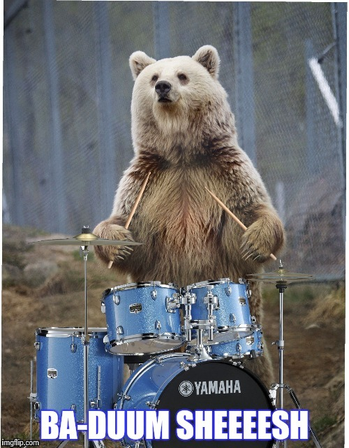 KJIU | image tagged in drummer bear | made w/ Imgflip meme maker