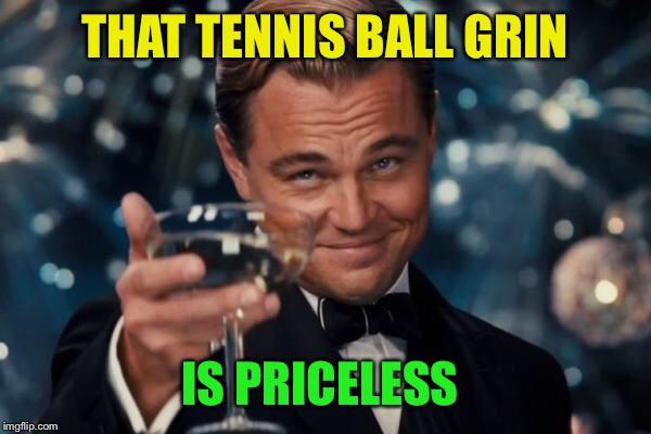 Leonardo Dicaprio Cheers Meme | THAT TENNIS BALL GRIN IS PRICELESS | image tagged in memes,leonardo dicaprio cheers | made w/ Imgflip meme maker