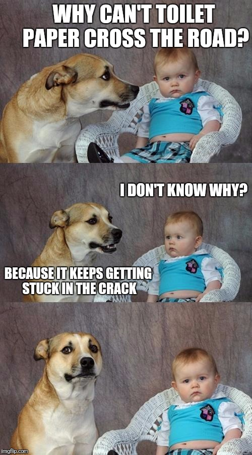 Dad Joke Dog Meme | WHY CAN'T TOILET PAPER CROSS THE ROAD? I DON'T KNOW WHY? BECAUSE IT KEEPS GETTING STUCK IN THE CRACK | image tagged in memes,dad joke dog | made w/ Imgflip meme maker