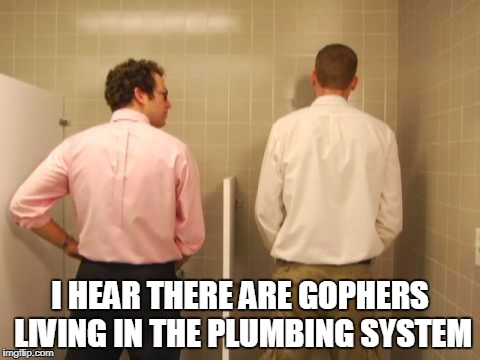 I HEAR THERE ARE GOPHERS LIVING IN THE PLUMBING SYSTEM | made w/ Imgflip meme maker