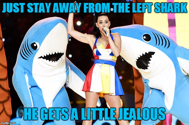 JUST STAY AWAY FROM THE LEFT SHARK HE GETS A LITTLE JEALOUS | made w/ Imgflip meme maker