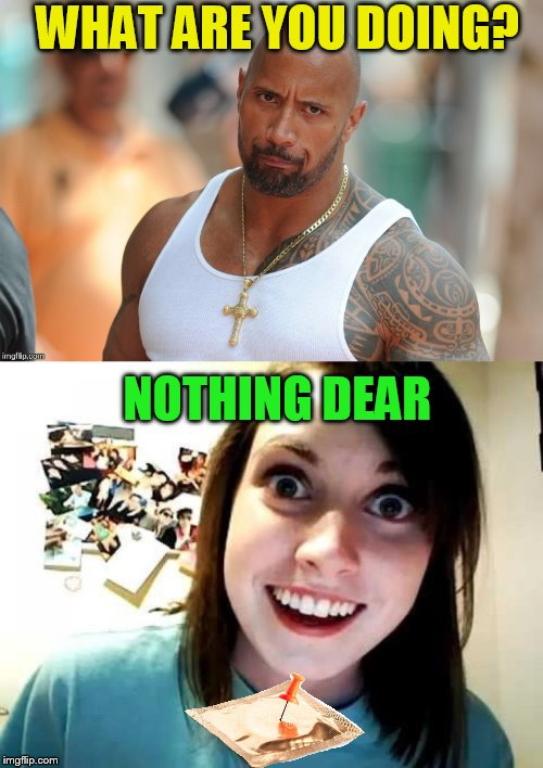 WHAT ARE YOU DOING? NOTHING DEAR | made w/ Imgflip meme maker