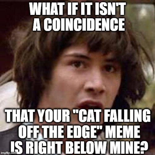 "Conspiracy Keanu Meme | WHAT IF IT ISN'T A COINCIDENCE THAT YOUR ""CAT FALLING OFF THE EDGE"" MEME IS RIGHT BELOW MINE? 