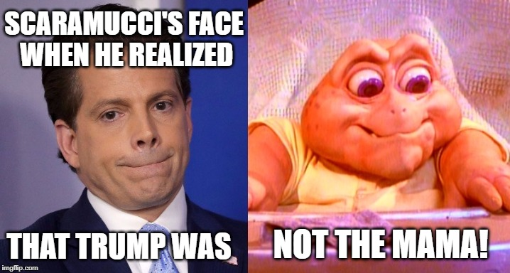 Scaramucci - Not the Mama | SCARAMUCCI'S FACE WHEN HE REALIZED THAT TRUMP WAS NOT THE MAMA! | image tagged in memes,scaramucci,anthony scaramucci,fired,donald trump,dinosaurs | made w/ Imgflip meme maker