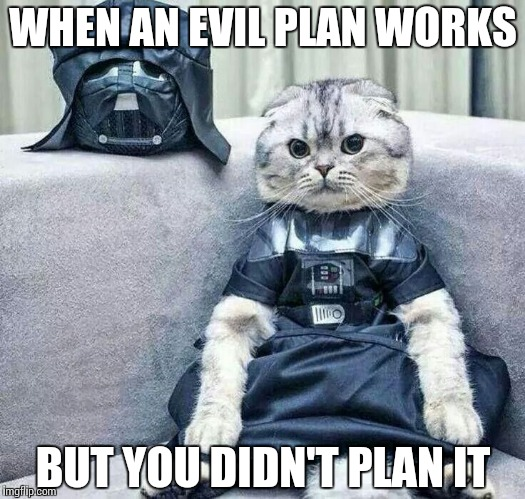 Darth Cat | WHEN AN EVIL PLAN WORKS BUT YOU DIDN'T PLAN IT | image tagged in darth cat | made w/ Imgflip meme maker