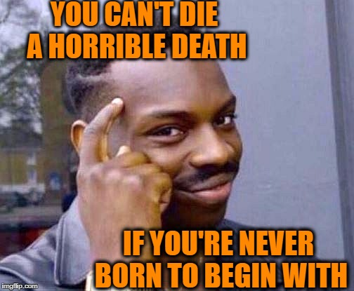 Quick thinker | YOU CAN'T DIE A HORRIBLE DEATH IF YOU'RE NEVER BORN TO BEGIN WITH | image tagged in smart,quick thinking | made w/ Imgflip meme maker