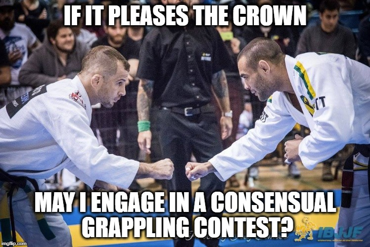 Brazilian Jiu Jitsu In Ontario | IF IT PLEASES THE CROWN MAY I ENGAGE IN A CONSENSUAL GRAPPLING CONTEST? | image tagged in bjj,jiu jitsu,ontario,canada,government,libertarian | made w/ Imgflip meme maker