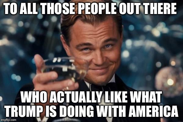 Leonardo Dicaprio Cheers Meme | TO ALL THOSE PEOPLE OUT THERE WHO ACTUALLY LIKE WHAT TRUMP IS DOING WITH AMERICA | image tagged in memes,leonardo dicaprio cheers | made w/ Imgflip meme maker