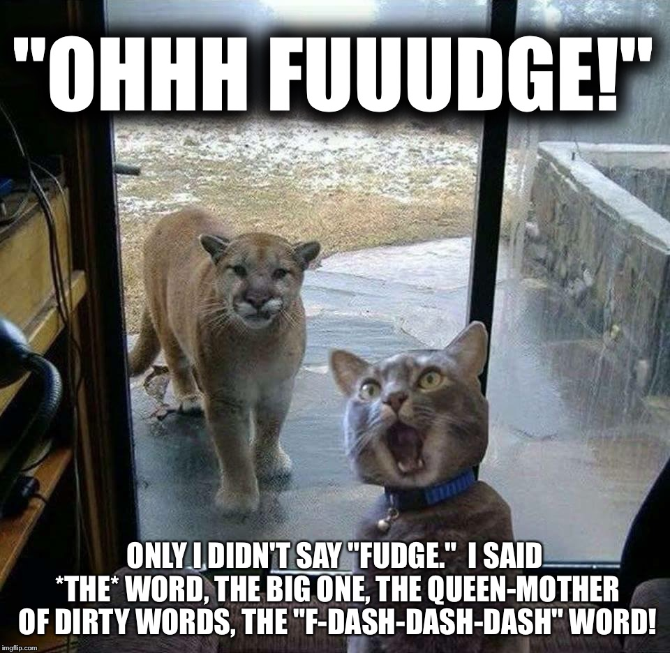 "RALPHIE'S HAVING A BAD DAY | ""OHHH FUUUDGE!"" ONLY I DIDN'T SAY ""FUDGE.""  I SAID *THE* WORD, THE BIG ONE, THE QUEEN-MOTHER OF DIRTY WORDS, THE ""F-DASH-DASH-DASH"" WORD! 