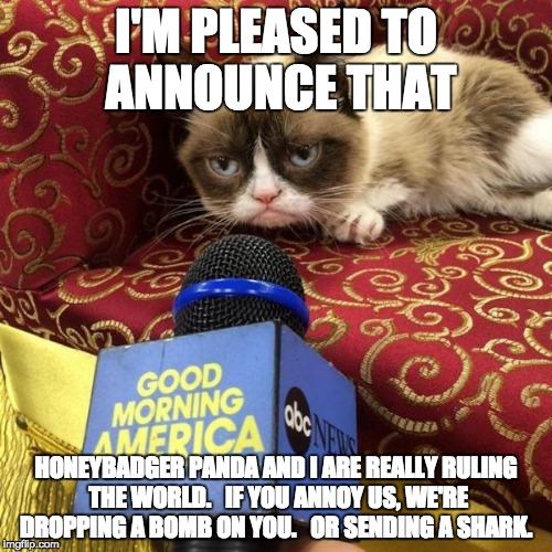 grumpy cat news | I'M PLEASED TO ANNOUNCE THAT HONEYBADGER PANDA AND I ARE REALLY RULING THE WORLD.   IF YOU ANNOY US, WE'RE DROPPING A BOMB ON YOU.   OR SEND | image tagged in grumpy cat news | made w/ Imgflip meme maker