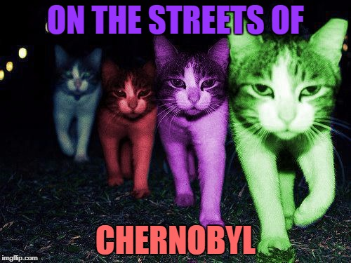 Wrong Neighborhood RayCats | ON THE STREETS OF CHERNOBYL | image tagged in wrong neighborhood raycats,memes | made w/ Imgflip meme maker