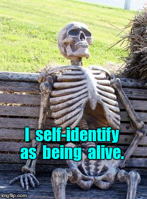 Skeleton self-identifies as alive | I  self-identify  as  being  alive. | image tagged in memes,waiting skeleton,transgender | made w/ Imgflip meme maker