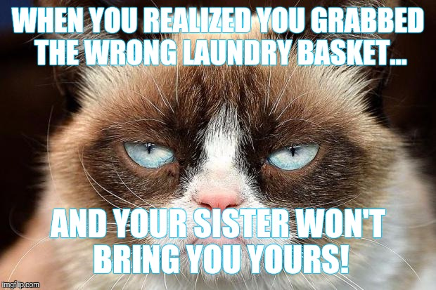 Grumpy Cat Not Amused Meme | WHEN YOU REALIZED YOU GRABBED THE WRONG LAUNDRY BASKET... AND YOUR SISTER WON'T BRING YOU YOURS! | image tagged in memes,grumpy cat not amused,grumpy cat | made w/ Imgflip meme maker