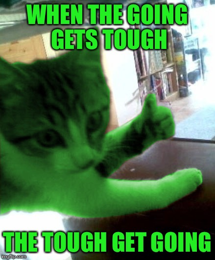 thumbs up RayCat | WHEN THE GOING GETS TOUGH THE TOUGH GET GOING | image tagged in thumbs up raycat | made w/ Imgflip meme maker