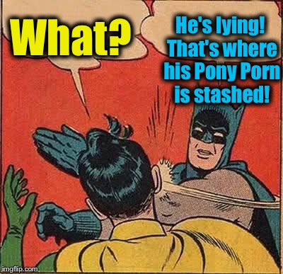 Batman Slapping Robin Meme | What? He's lying! That's where his Pony Porn is stashed! | image tagged in memes,batman slapping robin | made w/ Imgflip meme maker